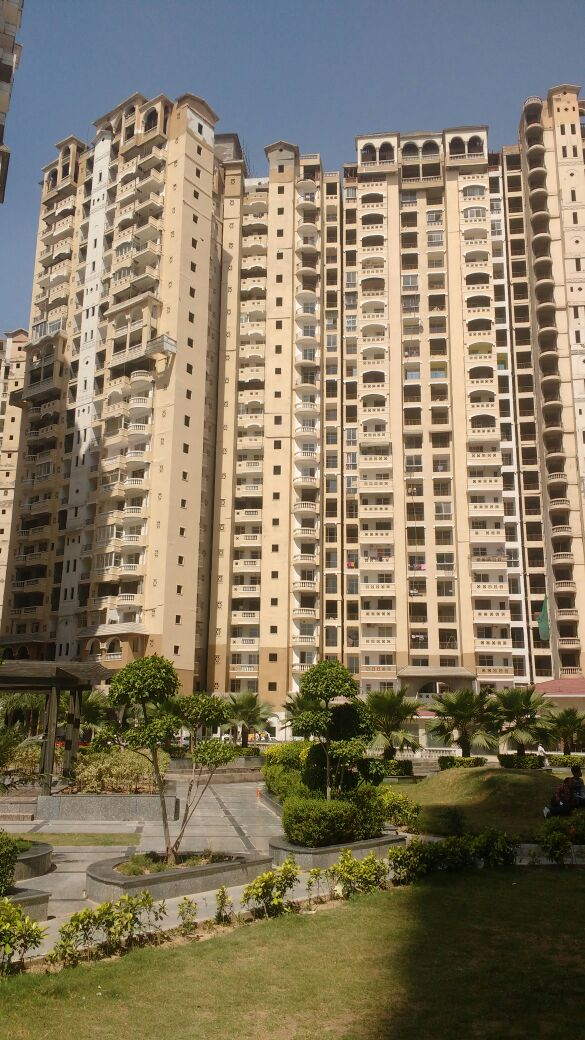 Property Management In Amrapali Sapphire Sector 45 Noida